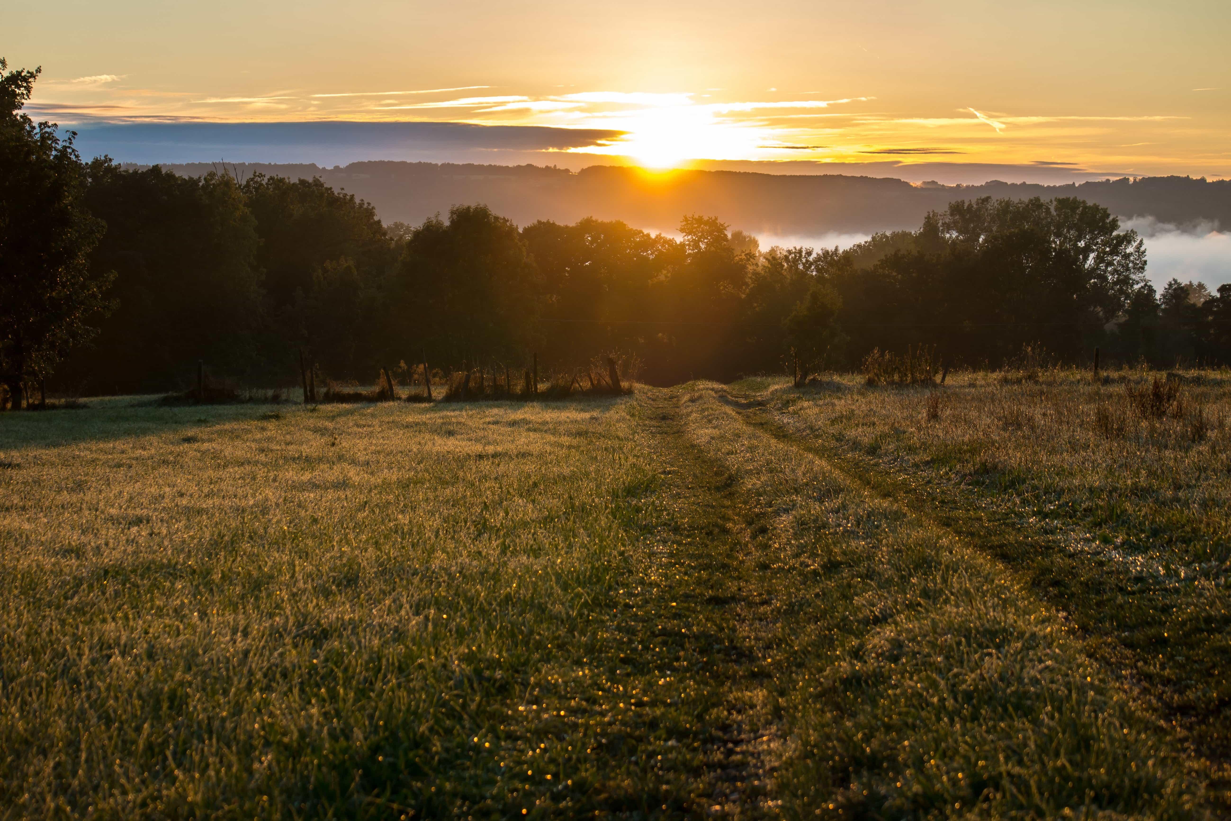 Free Picture Landscape Sunrise Agriculture Dawn Sun