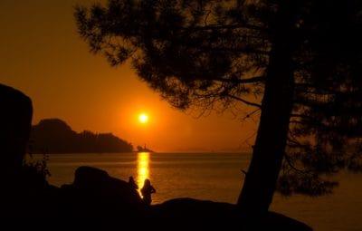 Alba, sagoma, alba, retroilluminato, tenebre, oscurità, acqua, sole