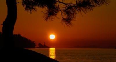 sunrise, tree, silhouette, dawn, backlit, dusk, sun, water, dusk, tropical island