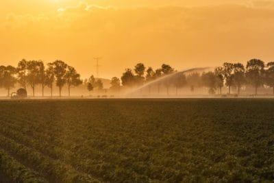 landscape, dawn, fog, sunrise, silhouette, agriculture, outdoor, mist, tree, mist, basin, sky