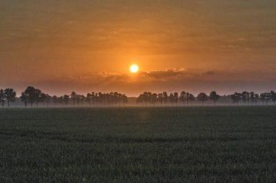 silhouette, lever du soleil, plein air, aube, soleil, paysage, ciel, eau, herbe en plein air,