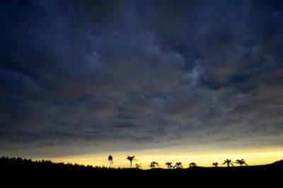 Alba, campo, collina, silhouette, cielo, paesaggio, alba, natura, sole, sagoma