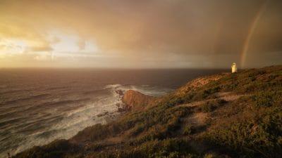 paysage, sunrise, côte, brouillard, eau, aube, mer, plage, bord de mer