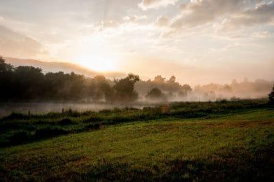 landscape, dawn, sunrise, mist, field, pasture, sun, fog, nature, tree, sky