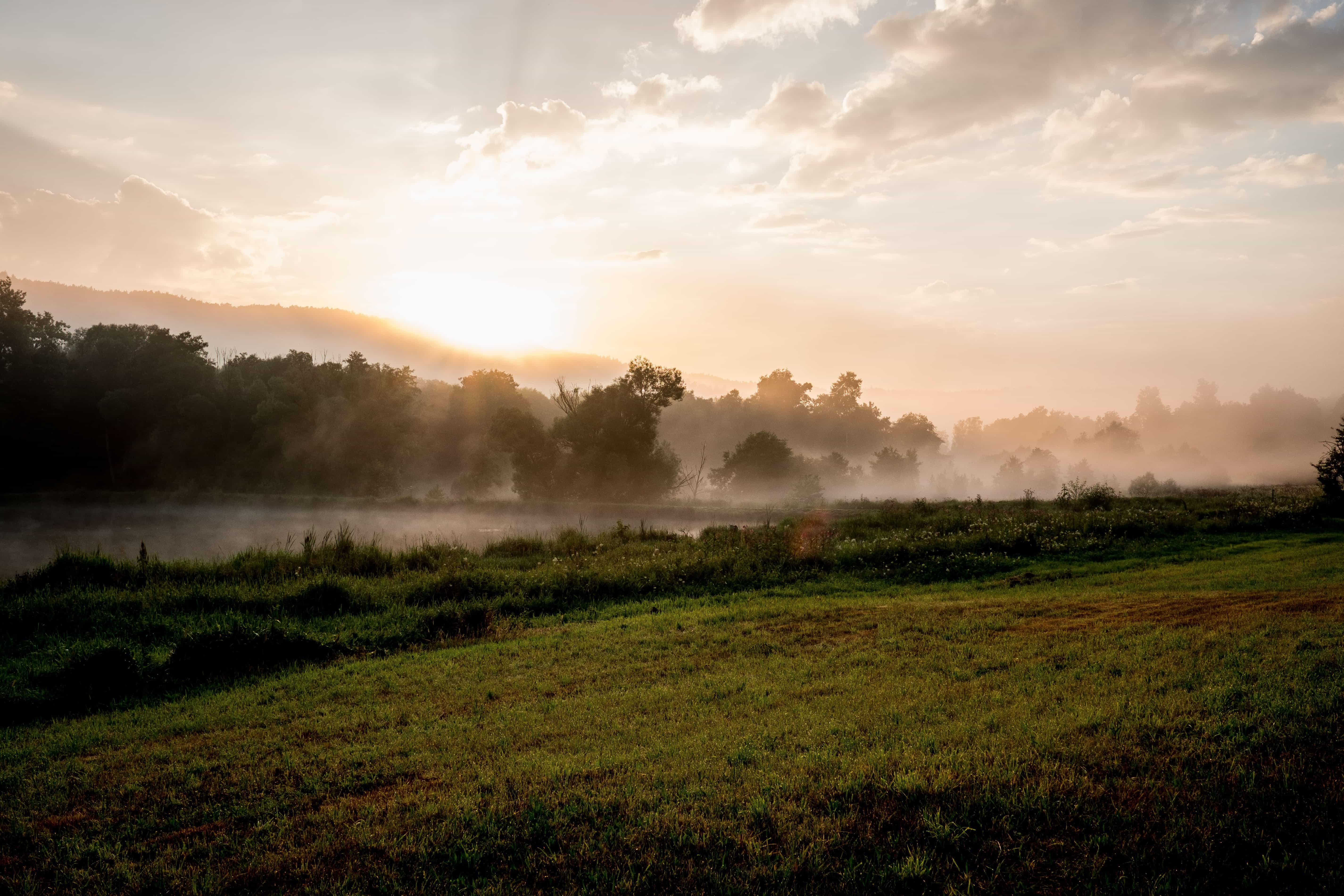Image libre: paysage, aube, lever du soleil, brume, champ