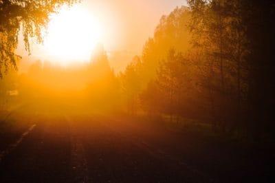 dawn, silhouette, sunrise, sunlight, sunshine, sun, landscape, fog, outdoor, tree