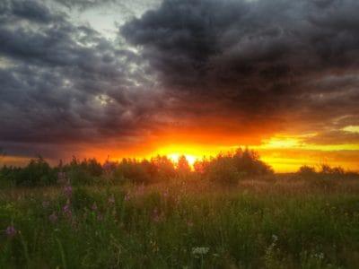 Parque Nacional, sol, hierba, Prado, paisaje, amanecer, sol, naturaleza, al aire libre, cielo, la hierba