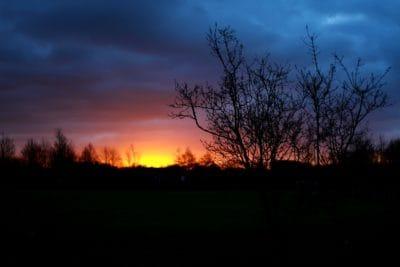 buio, notte, alba, alba, sagoma, ombra, paesaggio, albero, natura, retroilluminato, crepuscolo