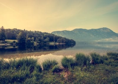 landscape, lake, national park, mist, sunset, water, dawn, sky, field, grass, land