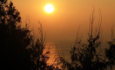 พระอาทิตย์ขึ้น หมอก แสงแดด รุ่งอรุณ เงา ต้นไม้ ภูมิทัศน์ ดวงอาทิตย์ ธรรมชาติ