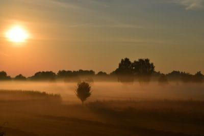 sunrise, sunlight, mist, dawn, sun, fog, landscape, dusk, sky, water