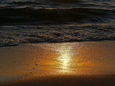 sunrise, coast, beach, ocean, water, sea, seascape, seashore