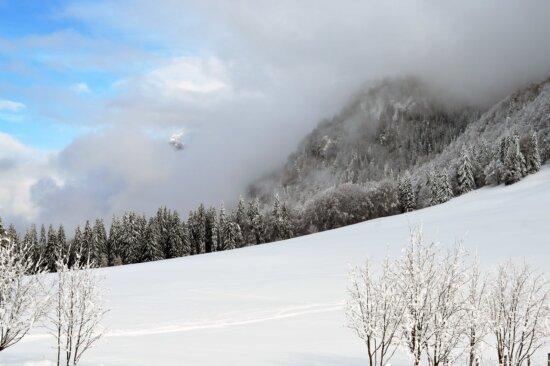 Schnee, Winter, Kälte, Landschaft, Frost, Nebel, Hügel, Berg, Holz