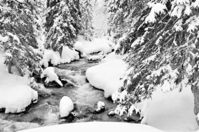 bosque, río, nieve, invierno, hielo, frío, congelado, árbol, frost, paisaje
