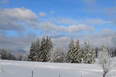 snow, winter, frost, forest, hill, blue sky, cloud, cold, wood, ice, frozen, tree, landscape