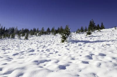 snow, winter, cold, mountain, hill, landscape, ice, sky, forest