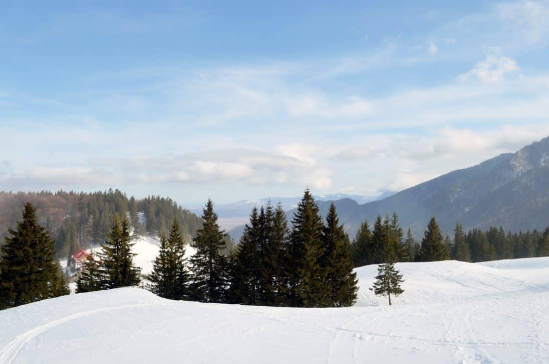 sneeuw, winter, berg, heuvel, blauwe hemel, koud, landschap, houten, boom
