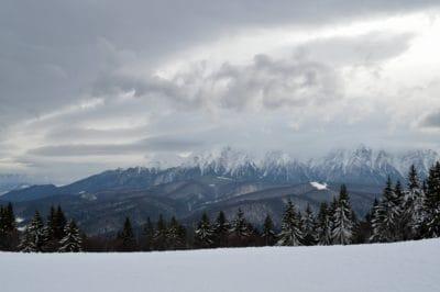neve, nube, collina, inverno, montagna, freddo, legno, ghiaccio, paesaggio, albero