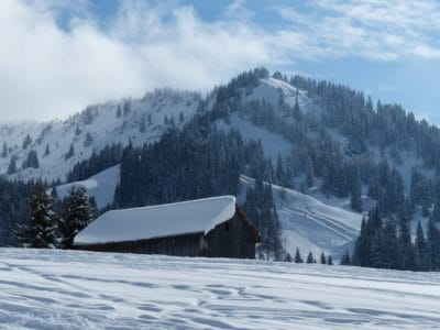 snow, altitude, landscape, winter, mountain, cold, chalet, ice, wood, evergreen