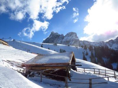 高度、雪、冬、寒さ、氷、山、凍結、霜、風景
