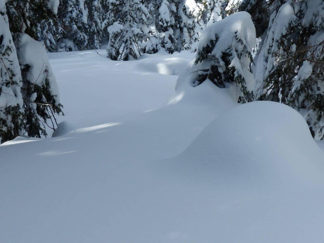 χιόνι, σκιά, χειμώνα, κρύο, πάγος, βουνό, κατεψυγμένα, παγετό, τοπίο