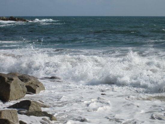 wave, wilderness, tide, water, sea, seashore, ocean, beach, foam, wave, coast