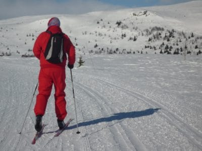 skiing, sport, snow, winter, mountain, cold, skier, ice, adventure