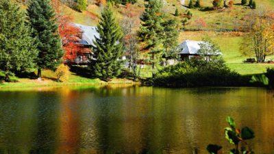 Lago, agua, reflexión, árbol, río, naturaleza al aire libre,