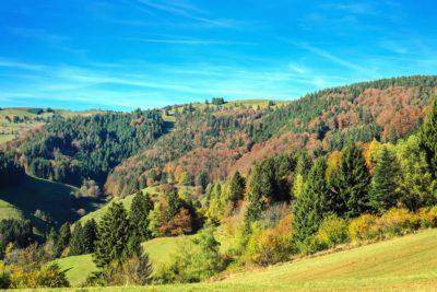 paesaggio, natura, albero, montagna, cielo, autunno, colorato, collina, orizzonte