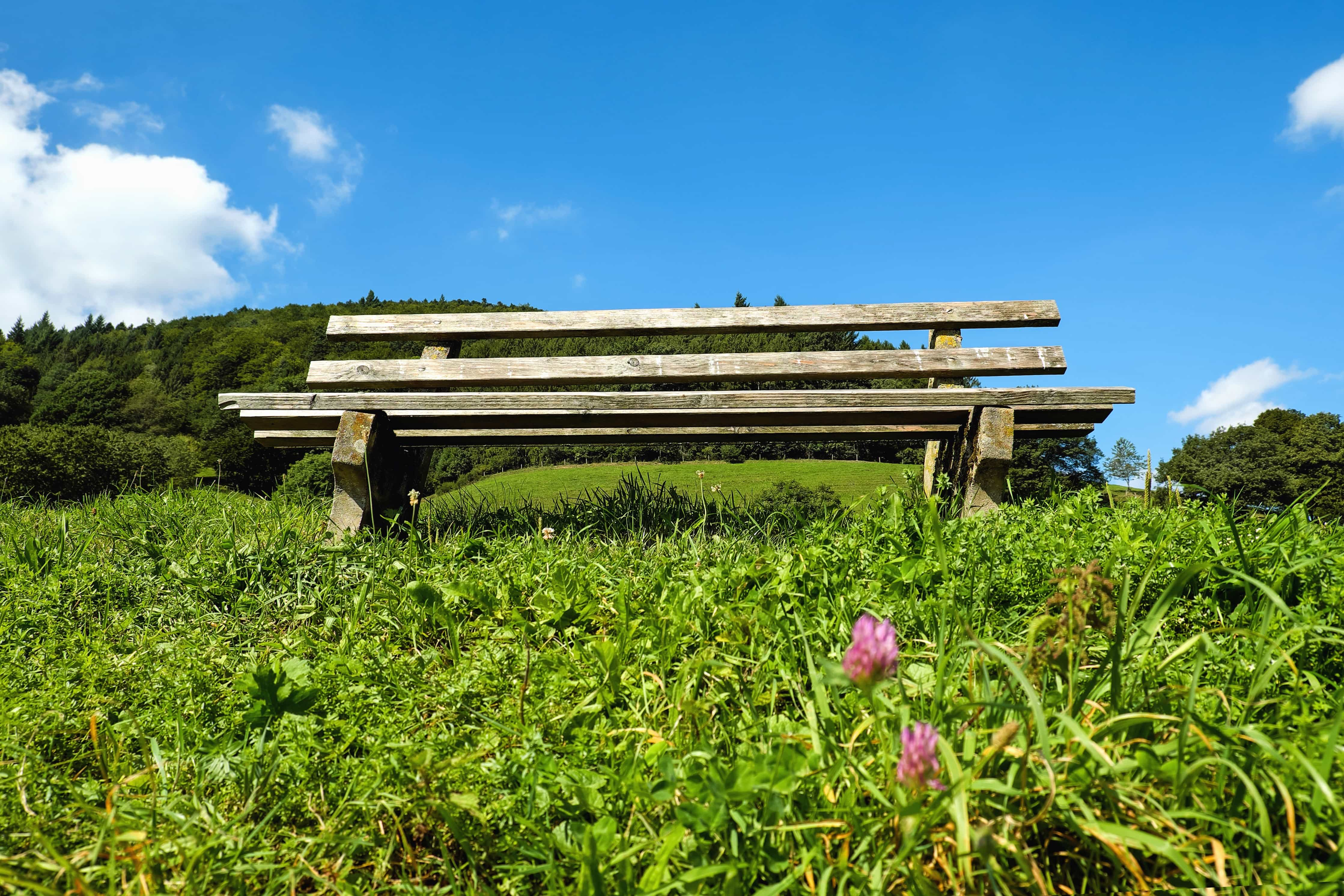 Free Picture Grass Meadow Bench Field Nature
