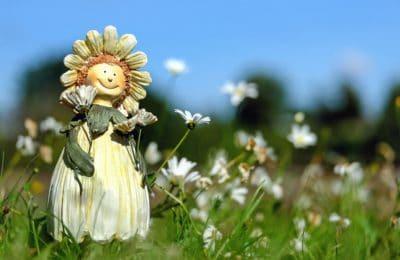 flower, art, doll, nature, grass, summer, flora, field