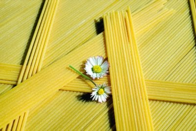 flower, food, yellow, still life, spaghetti, decoration