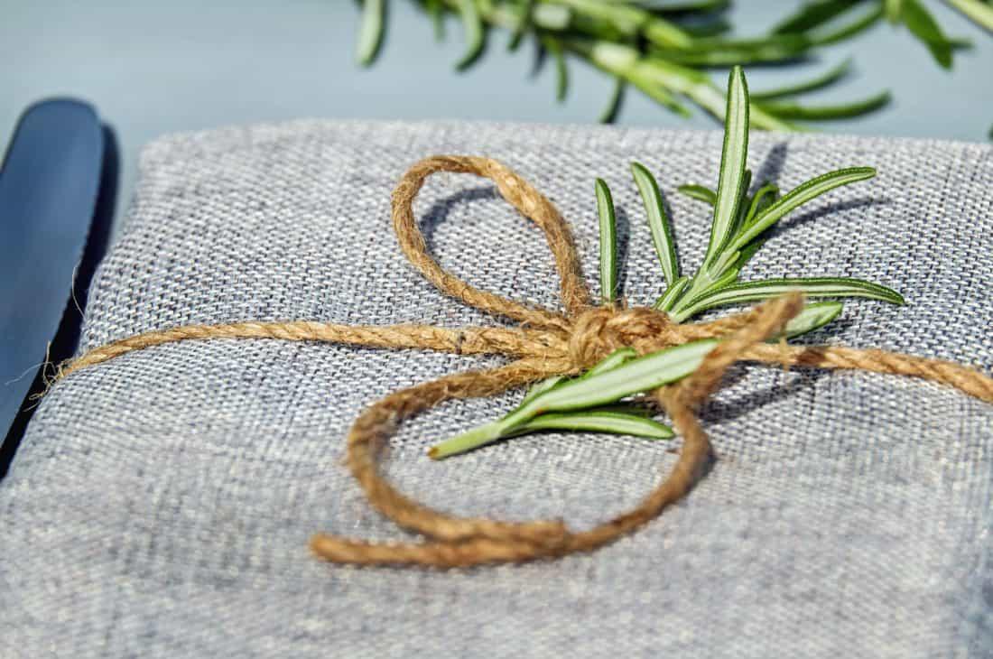 planta, hojas, decoración, cuerda, tela, paquete, regalo
