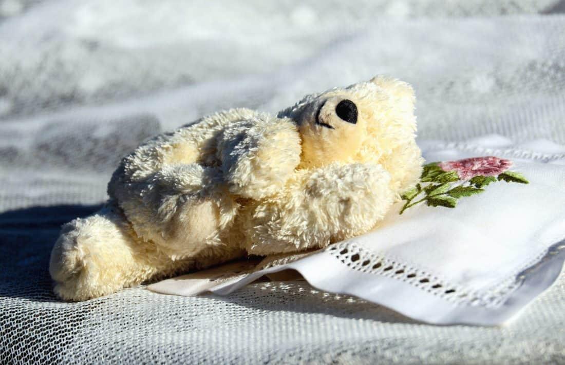 oso de peluche, juguete, muñeca, tela