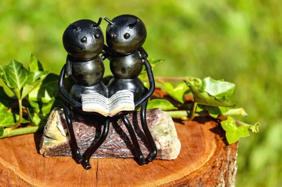 sculpture, art, toy, reading, leaf, book, wood