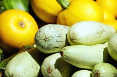 vegetal, nutrición, alimentos orgánicos, calabaza, macro, orgánica