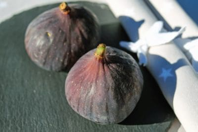 fig, diet, nature, fruit, food, vegetable, organic