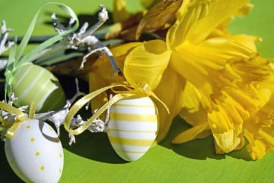 egg, decoration, colorful, flower, petal, shadow, Easter