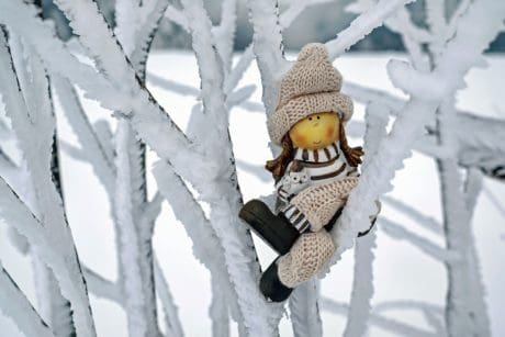 cold, winter, snow, frost, toy, doll, tree, branch, figure