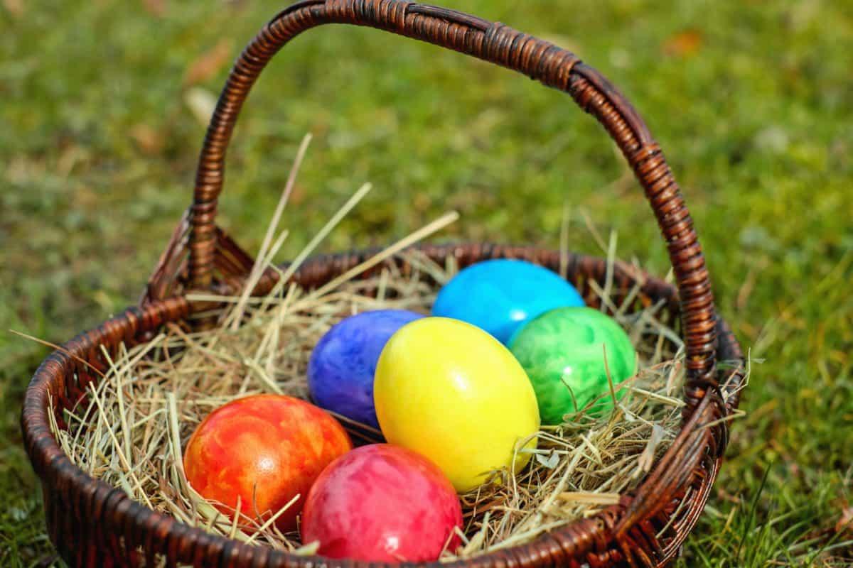 バスケット、卵、食品、カラフルな色、草、巣、イースター
