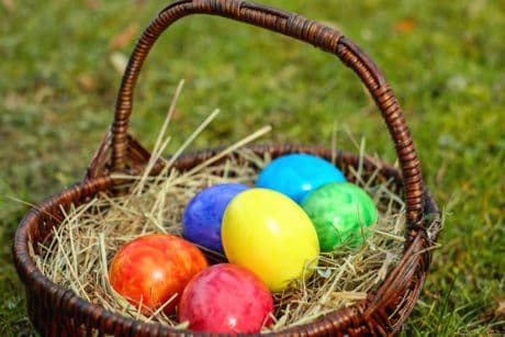 basket, egg, food, colorful, colors, grass, nest, Easter