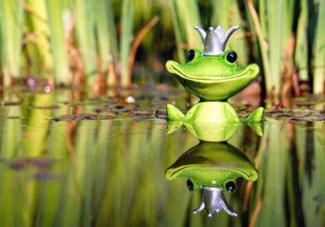 toy, figure, frog, water, wetland, reflection, crown, nature