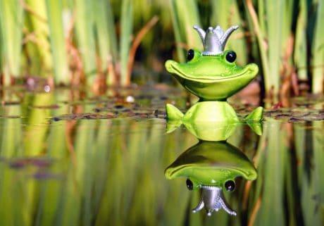 giocattolo, figura, rana, acqua, zone umide, riflessione, corona, natura