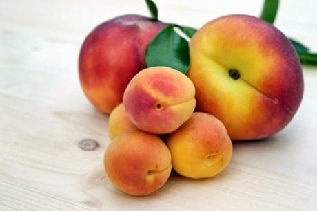 nutrition, fruit, food, peach, fruits, apricot, sweet, nectarine