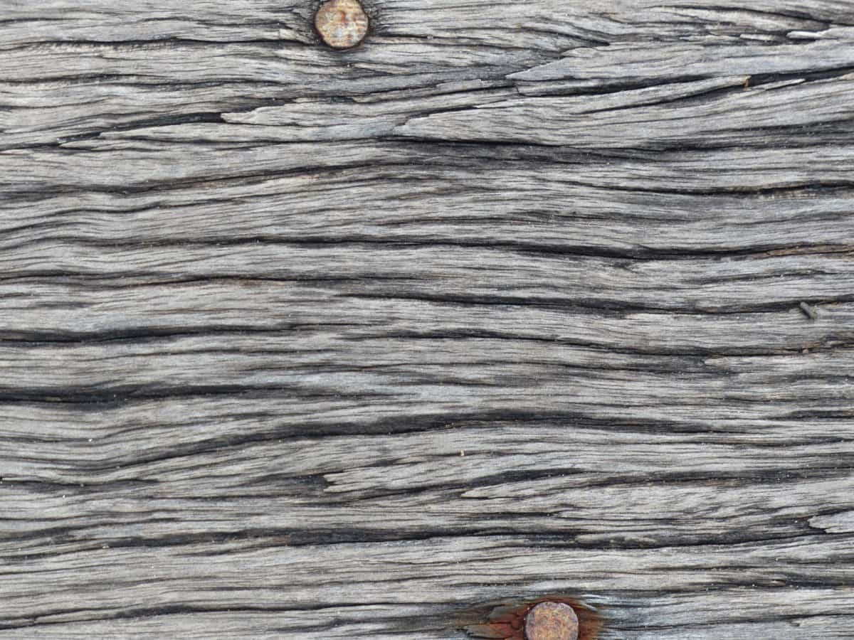 old, wall, design, macro, wood, hardwood, pattern