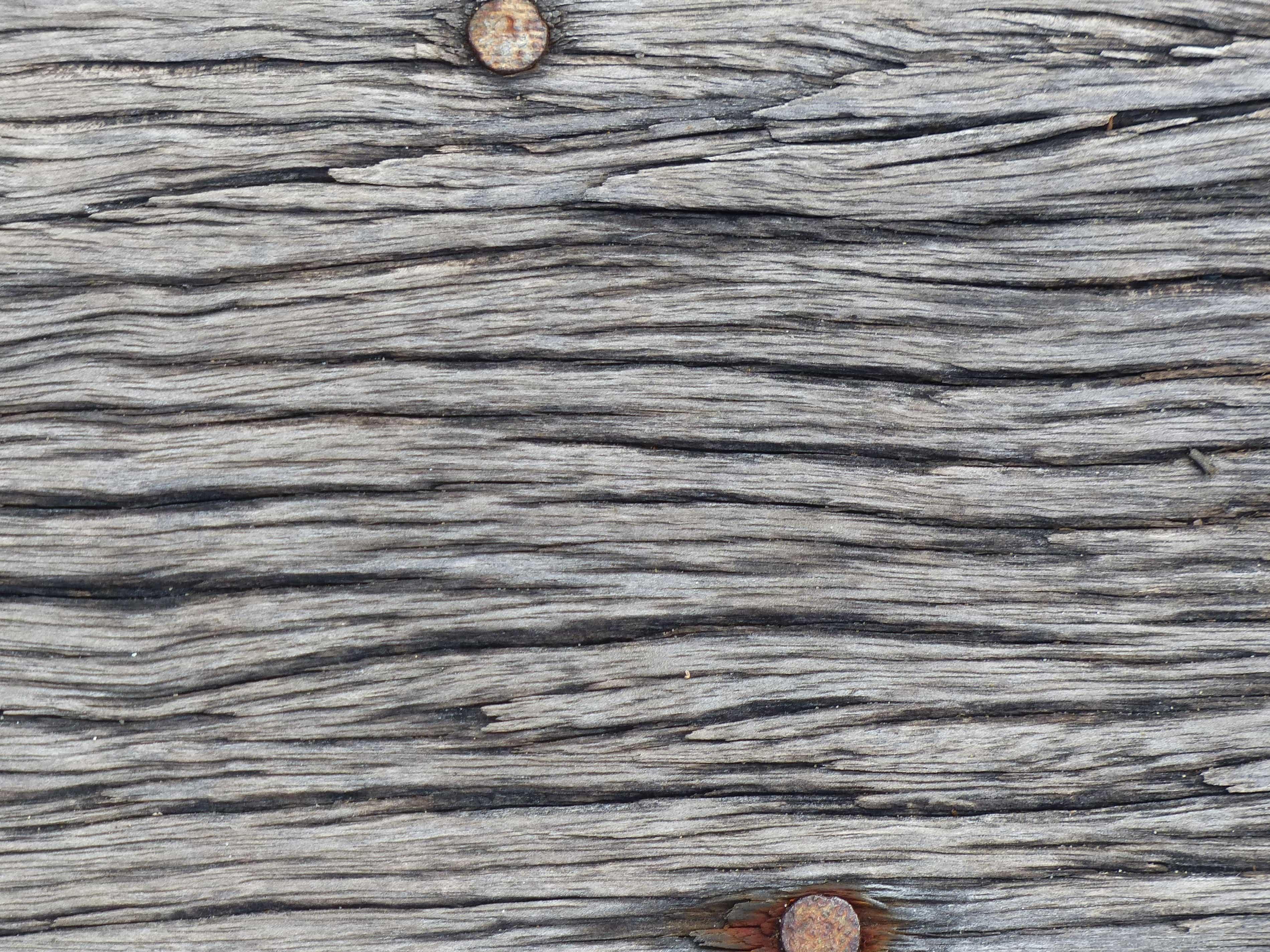 Old Wall Design Macro Wood Hardwood Pattern