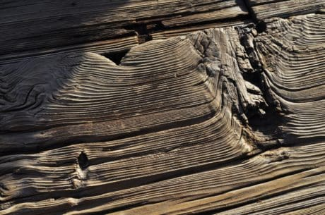 texture, wood, hardwood, wood knot, detail, outdoor