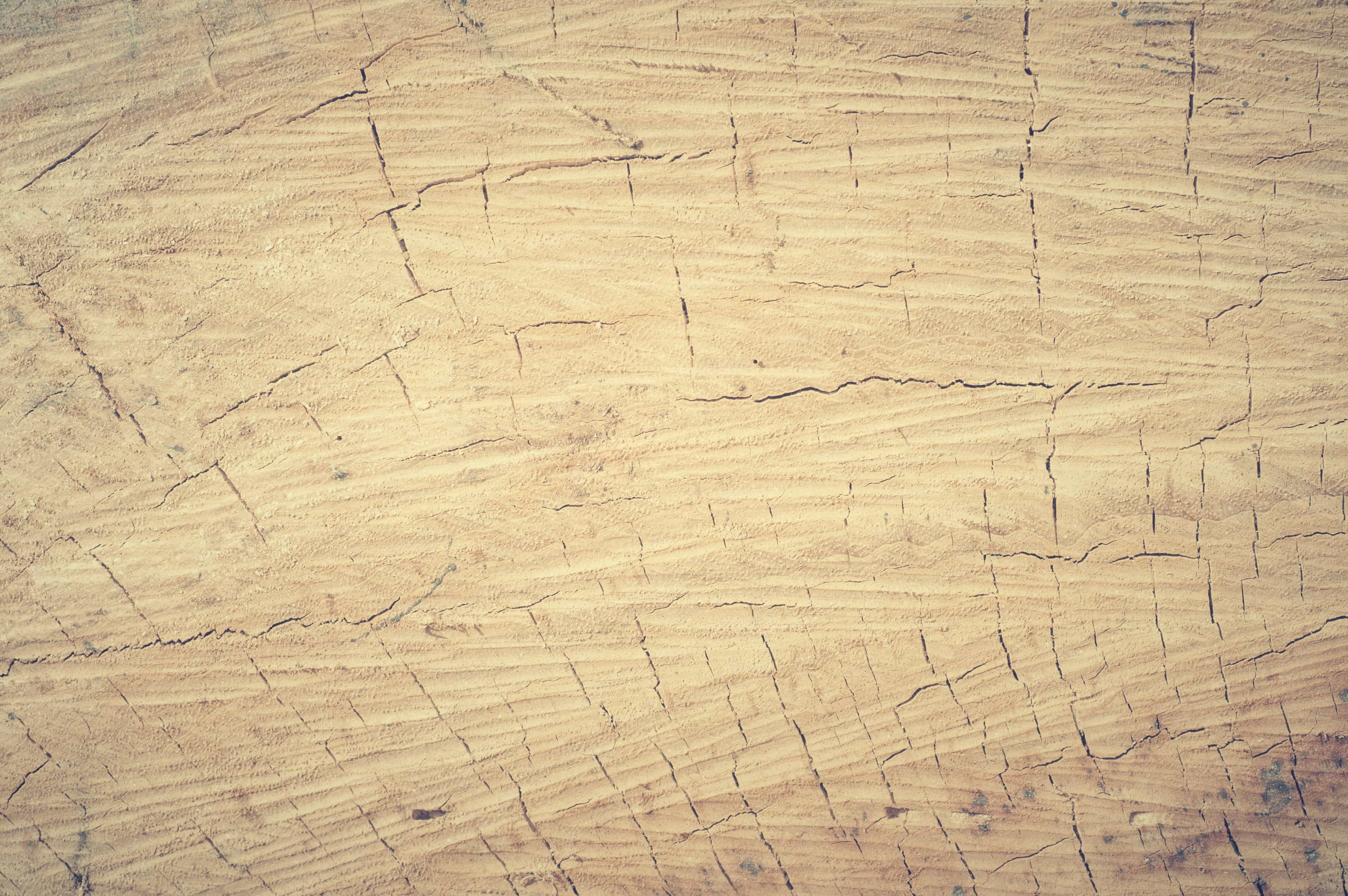 Free Picture Pattern Dirty Hardwood Old Texture Wood