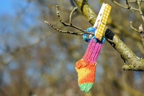 tree, nature, knot, pinch, sock, branch, wool