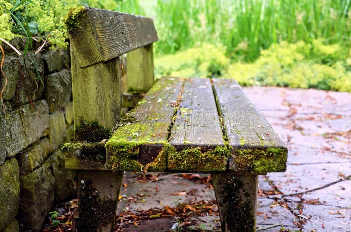 image libre pierre nature bois banc en plein air arbre herbe object. Black Bedroom Furniture Sets. Home Design Ideas
